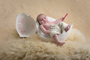 Newborn - Themed Pictures